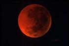 Moon Eclips