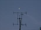 el moon 006